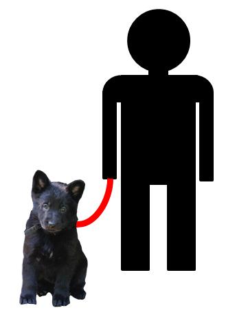 Zielgruppe Hundebesitzer